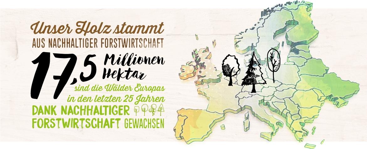 Die Wälder Europas sind dank nachhaltiger Forstwirtschaft um 17,5 Millionen Hektar gewachsen