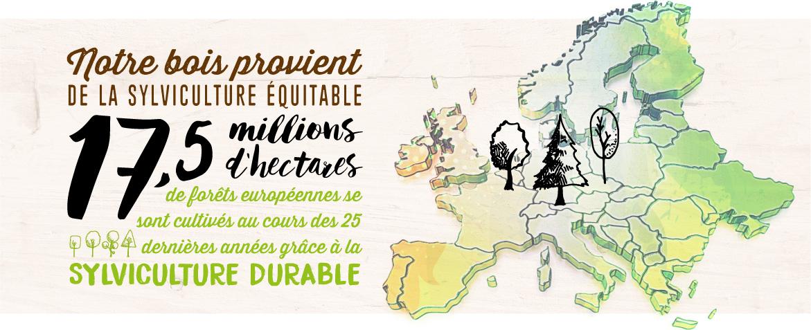 Dans toute l'Europe, la superficie forestière a augmenté de 17,5 millions d'hectares entre 1990 et 2015.